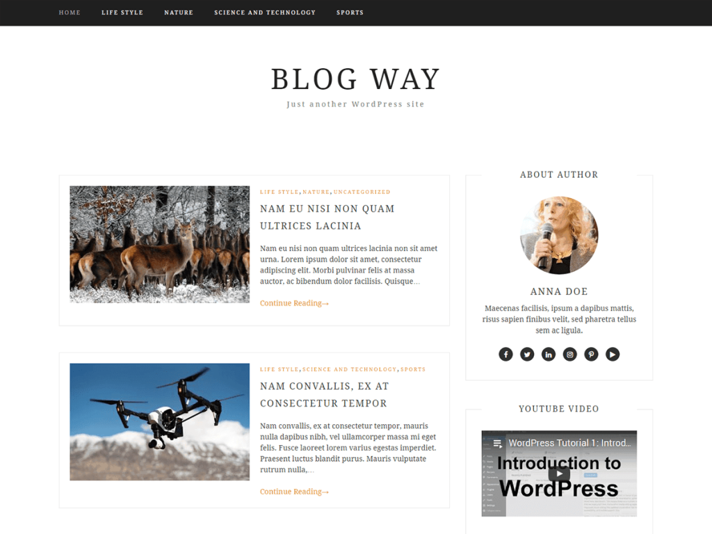 Blog Way WordPress blog theme