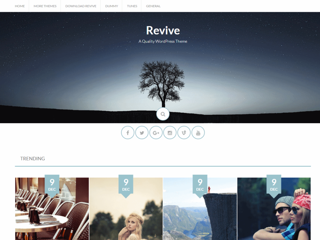 Revive WordPress blog theme