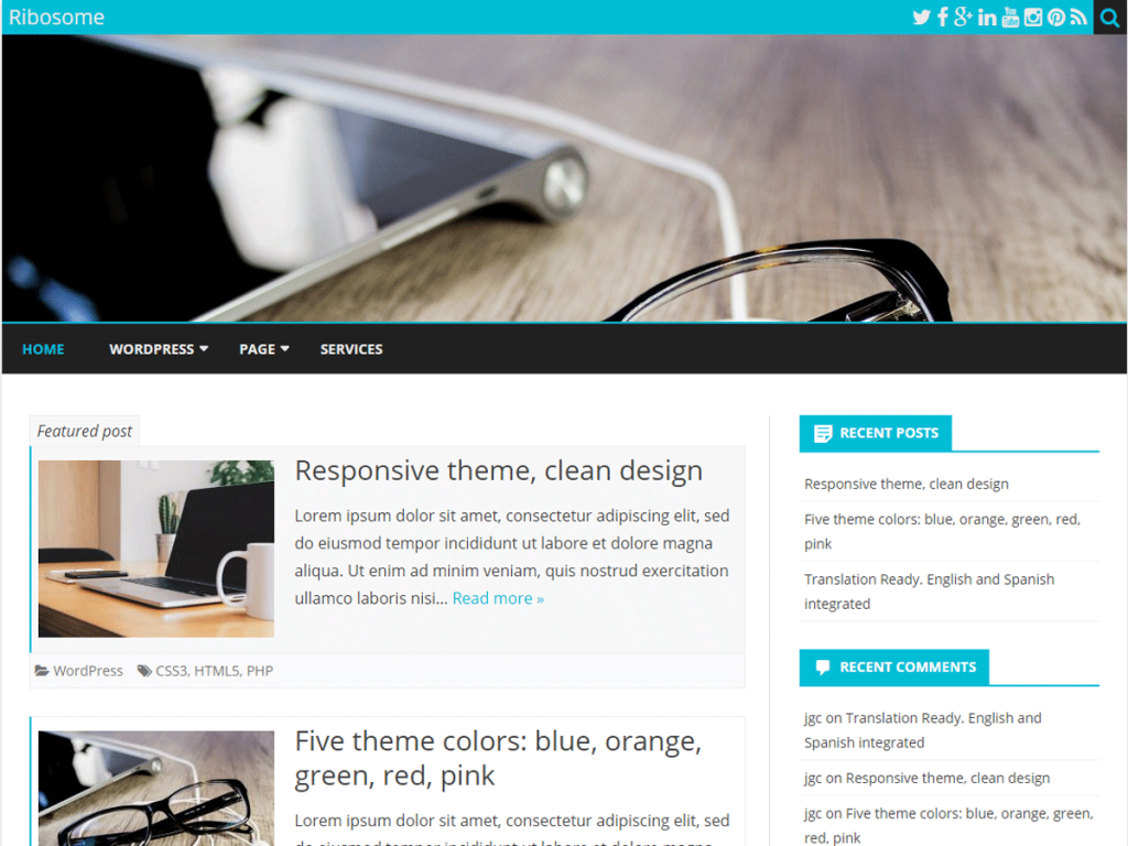Ribosome WordPress theme